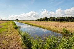 Typical Dutch rural landscape in summertime. Dutch agricultural landscape in the summer season. The cut grass is drying on the field. Diagonally in view is a Stock Images