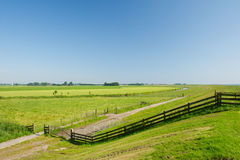 Dutch agrucultural landscape Stock Photography