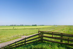 Dutch agrucultural landscape Royalty Free Stock Photos