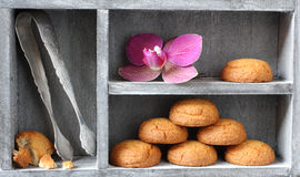 Dutch almond cookies called Stock Image