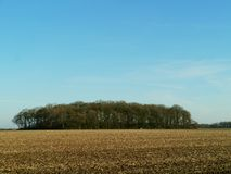Dutch arable land. Lying fallow arable in Drenthe in the Netherlands Royalty Free Stock Photos
