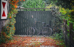 Dutch autumn with bike Royalty Free Stock Image