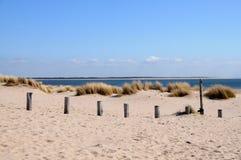 Free Dutch Beach Royalty Free Stock Photography - 16428747