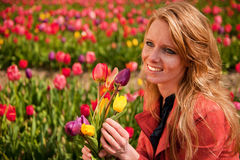 Dutch blond girl in field with tulips Stock Images