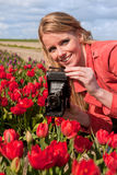 Dutch blond girl with old photo camera. Portrait of a beautiful blond Dutch girl taking pictures in tulips field Royalty Free Stock Images