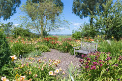 Dutch blooming garden with a retreat and wooden bench Stock Image