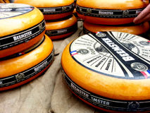 Dutch cheese. At Alkmaar cheese market in Nederland Royalty Free Stock Photos