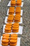 Dutch Cheese in Gouda Stock Image