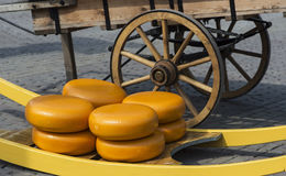 Dutch cheese wheels Royalty Free Stock Photo