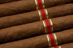 Dutch Cigars Royalty Free Stock Photos
