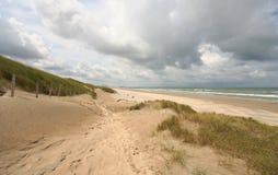 Dutch Coast. Dunes and beach on the Dutch coast Royalty Free Stock Photography