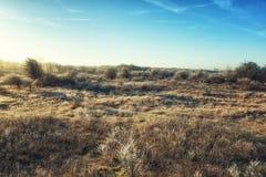 Dutch Coastal Area Royalty Free Stock Image