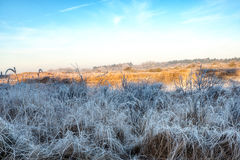 Dutch Coastal Feature. A Dutch Coastal Winter Landscape Royalty Free Stock Image