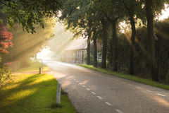 Dutch country road and farm. In early morning sun after the rain Stock Image