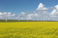 Dutch countryside landscape with rapeseed and wind turbines Stock Images