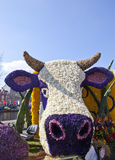 Dutch cow with flowers Stock Photos