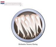 Hollandse Nieuwe Haring, A Popular Food in Netherlands. Dutch Cuisine, Hollandse Nieuwe Haring or Traditional Raw and Lightly Salted Herring. One of The Most Royalty Free Stock Images