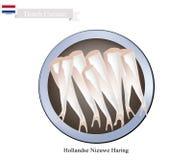 Hollandse Nieuwe Haring, A Popular Food in Netherlands Royalty Free Stock Images