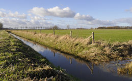 Dutch ditch in a grass-land Royalty Free Stock Images