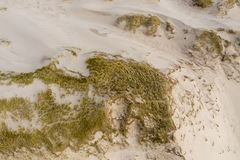 Dutch dunes by the sea from above royalty free stock photography