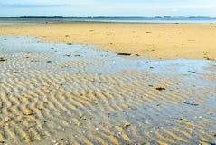 Dutch estuary at low tide Royalty Free Stock Photo
