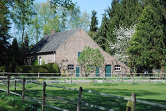 Dutch  farm ranch with pasture, fencing and trees Royalty Free Stock Images