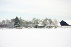 Dutch farm in the snow. Landscape with Dutch farm in the snow it's winter time Stock Images