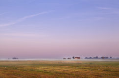 Dutch farm at sunrise Stock Images
