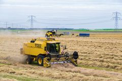 Dutch farmers with agricultural machinery harvesting a wheat field Royalty Free Stock Photography