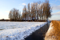 Dutch farmhouse in winter Stock Photography