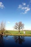 Dutch Farmland Stock Photos