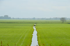Dutch Farmland Around Weesp. The Netherlands. Beautiful grassland with a ditch in the middle Royalty Free Stock Image