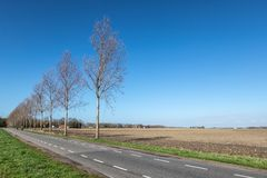 Dutch farmland in spring with bare fields Royalty Free Stock Image