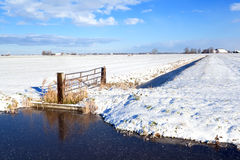 Dutch farmland in winter Royalty Free Stock Image