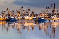 Dutch Fishery in Lauwersoog harbor Stock Images