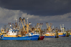 Dutch Fishing boats in Lauwersoog harbor Royalty Free Stock Photos