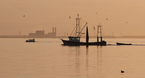 Dutch fishing ship sailing home in sunset. Fishing ship sailing home in sunset royalty free stock images