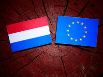 Dutch flag with EU flag on a tree stump isolated Royalty Free Stock Photo