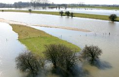 Dutch Flooded fore-lands. After long raining the water level of the river IJssel in the Netherlands is very high resulting in flooded fore-lands near the town of stock photos