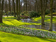 A dutch green park. A green park with flower beds in april Stock Images