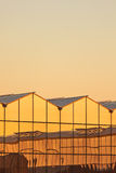 Dutch greenhouse during sunset Stock Photo