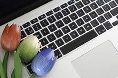 Dutch keyboard. Dutch wooden tulips on a keyboard Stock Photo