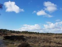 dutch krajobrazu zdjęcie stock