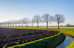 Dutch landcape in autumn Stock Photo