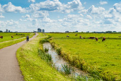 Dutch landscape with bicyclists Royalty Free Stock Image