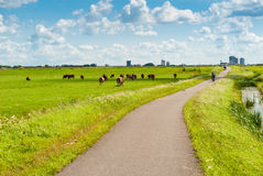 Dutch landscape with bicyclists Royalty Free Stock Photography