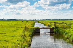 Dutch landscape with canal Stock Image
