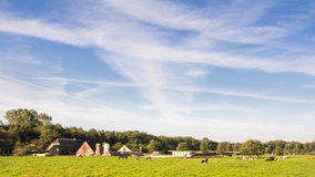 Dutch landscape Stock Images