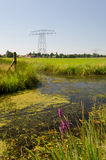 Dutch landscape in Friesland Royalty Free Stock Photography