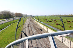 Dutch landscape of highway and railway stock images